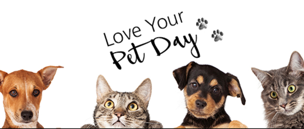 Love Your Pet Day 2021 (today and every other day)